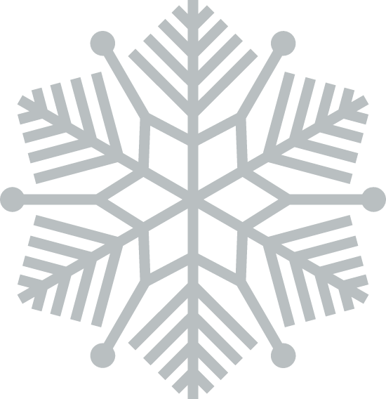 Evergreen Snowflake
