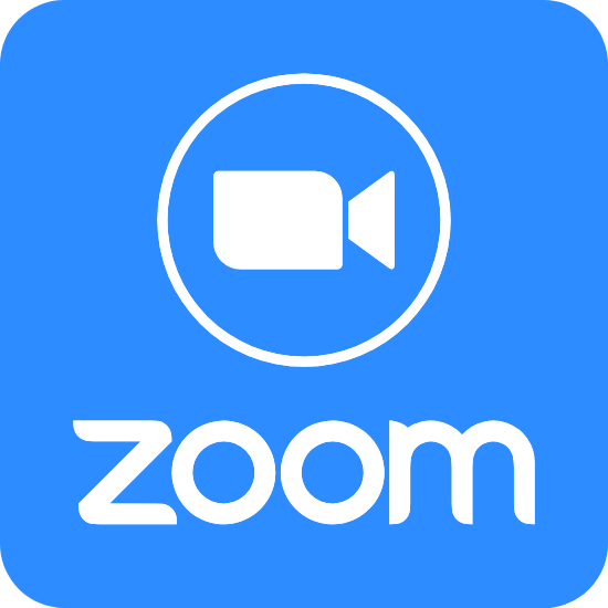 Zoom Logo Filled