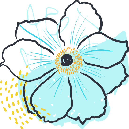 Painted Anemone