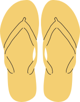 Flip Flop Thongs