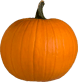 Plain Pumpkin