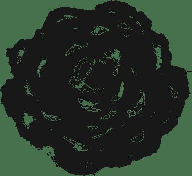 Painted Bloom