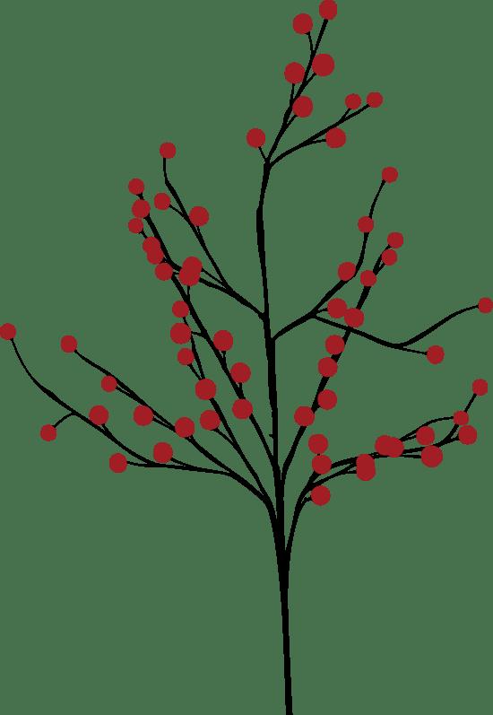 Holly Branch