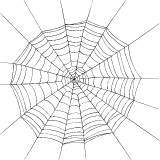 Round Spider Web
