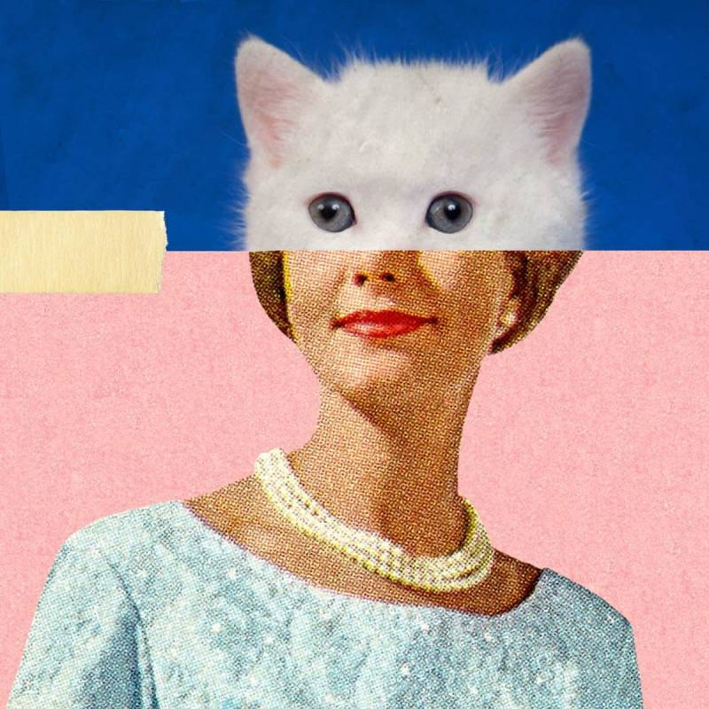 This digital collage uses vintage imagery and a cat face.