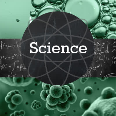 Did you know PicMonkey's back to school projects make you 15% smarter? It's science.
