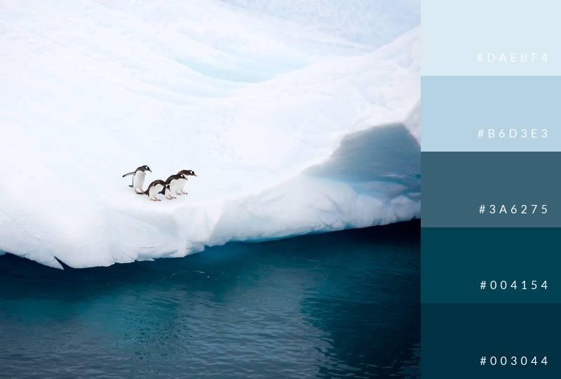 color-palette-seasonal-winter