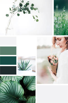 Plants & Flowers Collage pinterest template