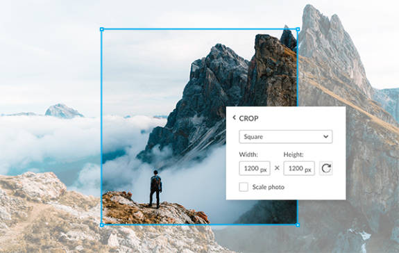 How to easily resize an image online crop a photo online