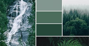 Paletas de colores inspiradoras