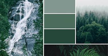 Inspirational color palettes
