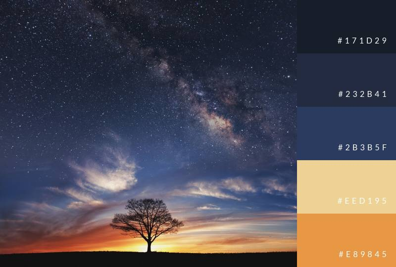 color-palette-starry-night