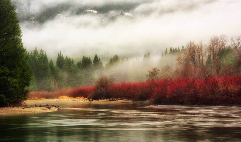 Fall photography tips: if you see red, shoot it.