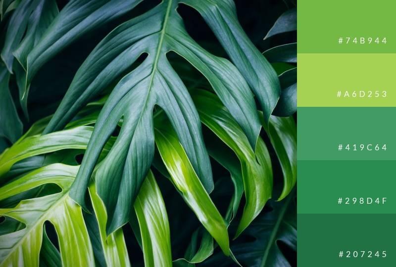 color-palette-greens