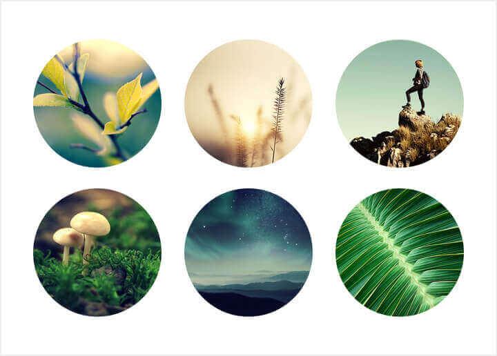 Es fácil crear un collage en forma de círculo con la herramienta Collages de PicMonkey.