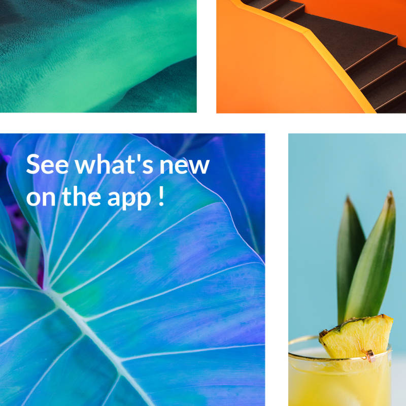 See what's new in the PicMonkey Mobile App for iOS gifs