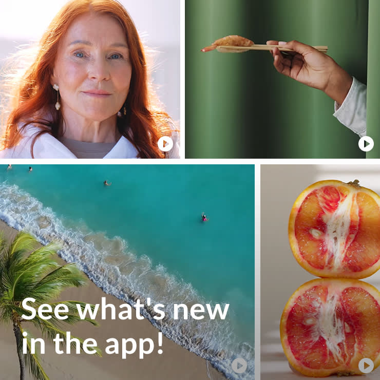 New stock video examples in the PicMonkey mobile app.