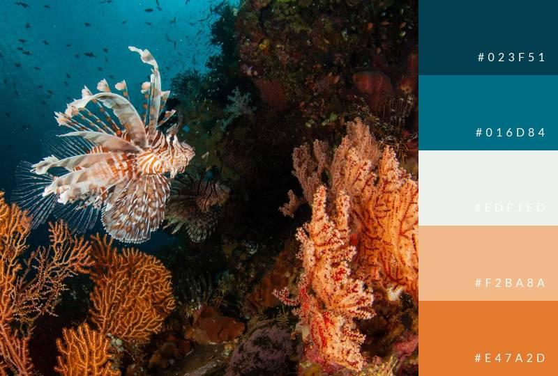color-palette-lionfish