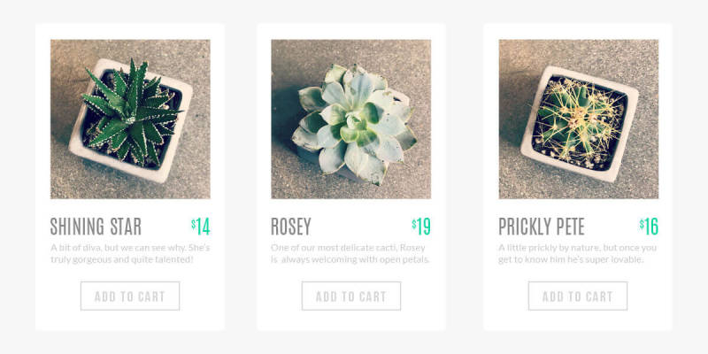 Make sure the product photos on your website are attractive and matching.