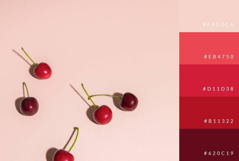color-palette-berry-brights