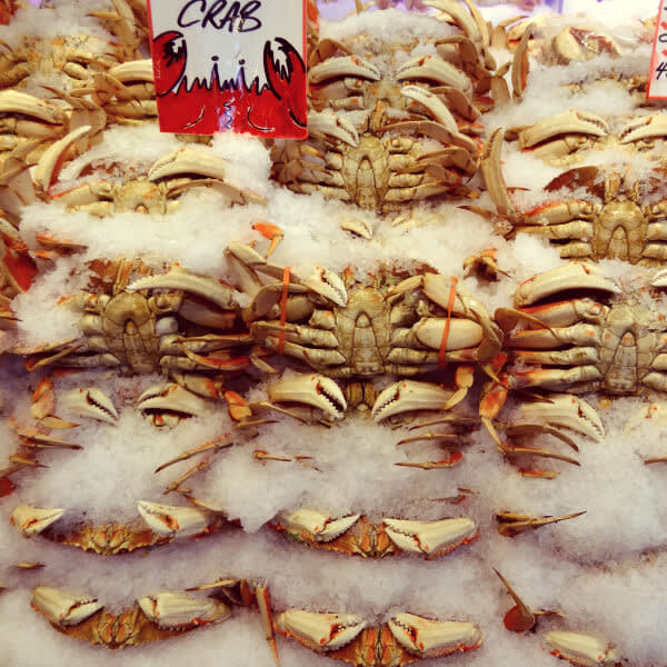 Staff photo walk: Dungeness Crab nestled in ice at Pike Place Market.