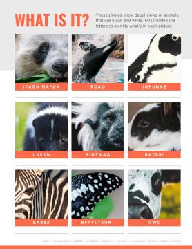 Animal identification worksheet maker template at PicMonkey