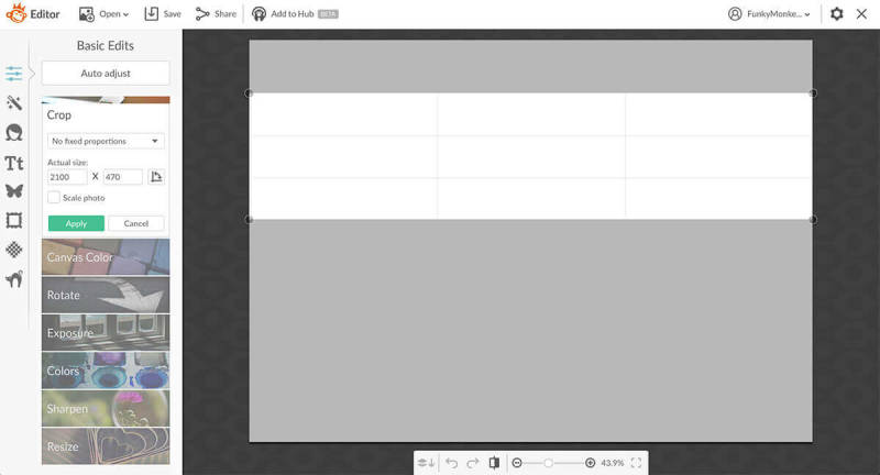 Crop your blank canvas into a long rectangle to create a photo strip.