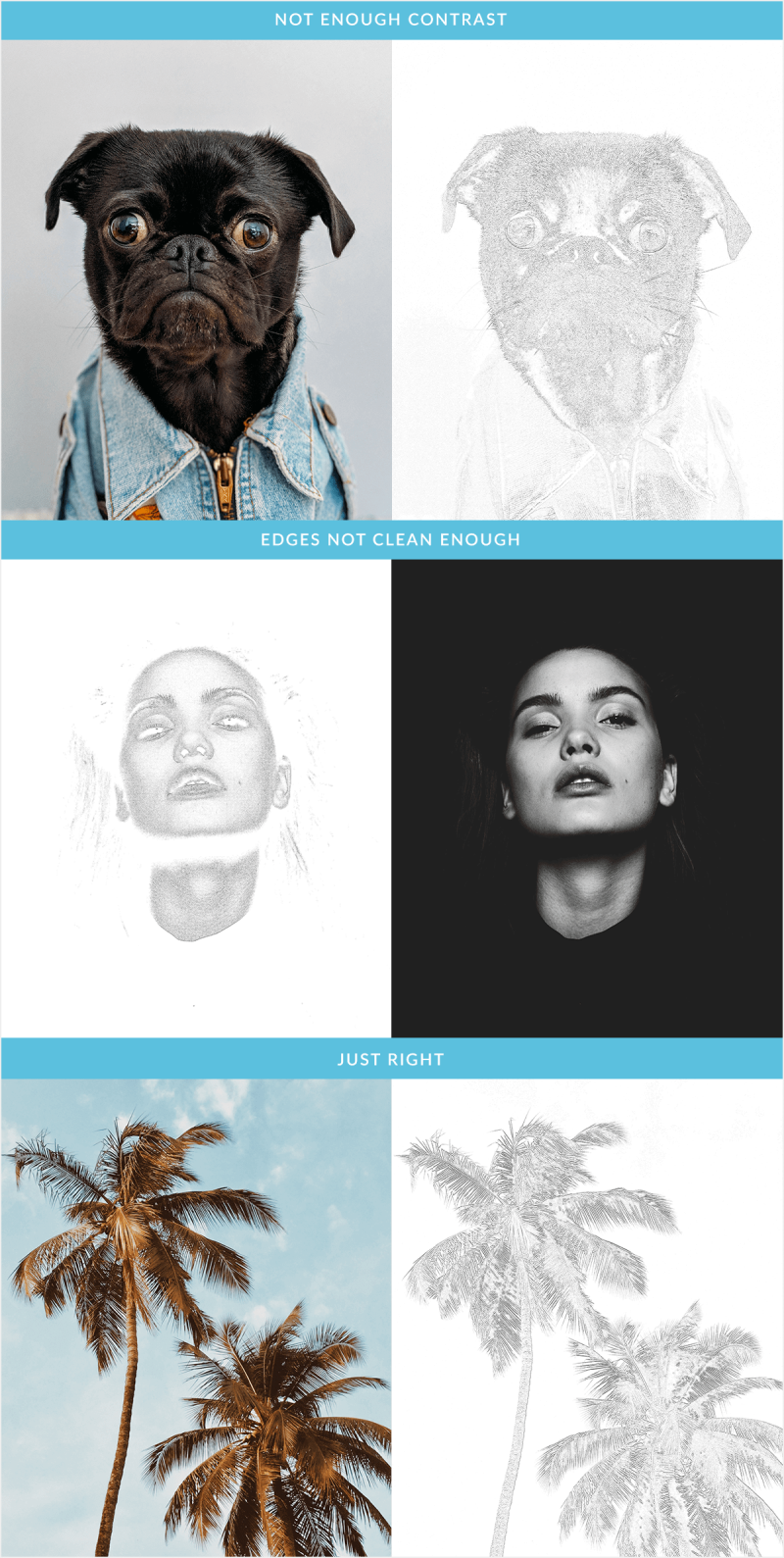 elevar su imagen cómo elegir la mejor imagen para un boceto fotográfico - 3 ejemplose actualizar banner