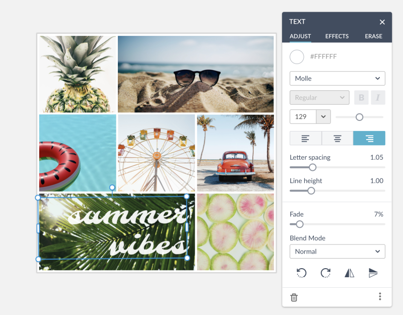 customize your collage with text and textures and effects