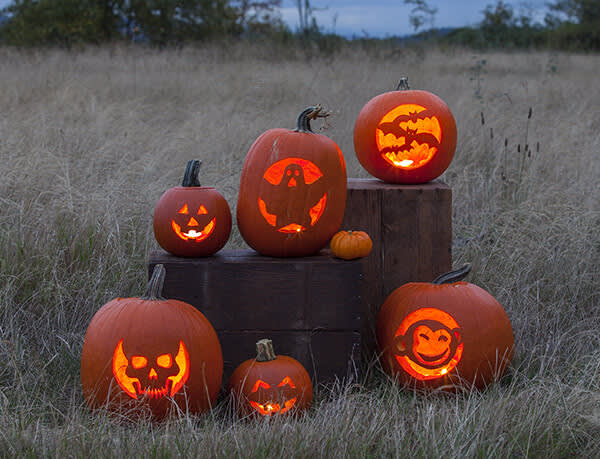 Carve the great pumpkin with stencils from PicMonkey