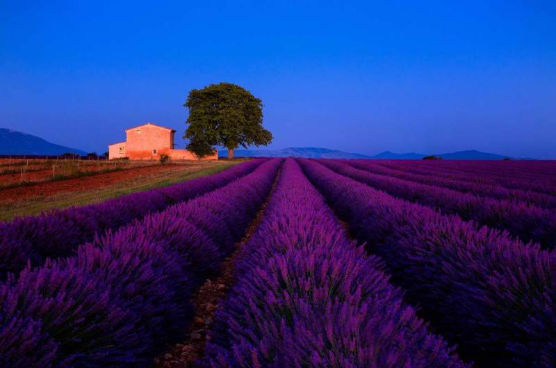 VALENSOLE PLATEAU, PROVENCE, FRANCE, 30 SECONDS, F16, ISO 400