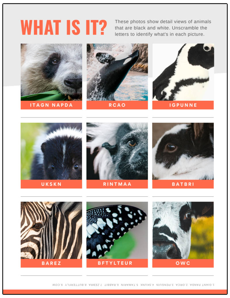 worksheet pictures animals