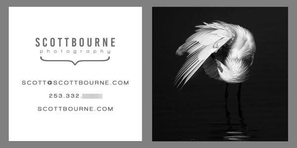This creative black, white, and grey business card design features a stunning photo.
