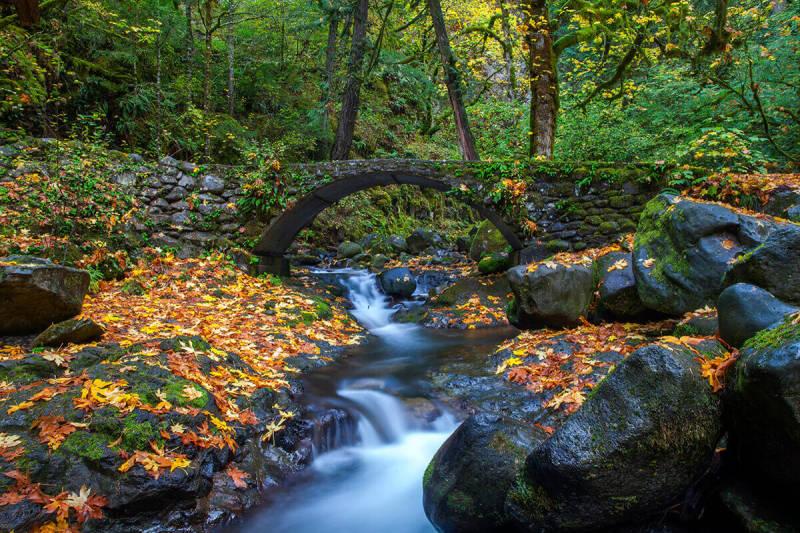Consejo para la fotografía de paisajes: usa un trípode para conseguir que el agua corriente se vea sedosa y suave.