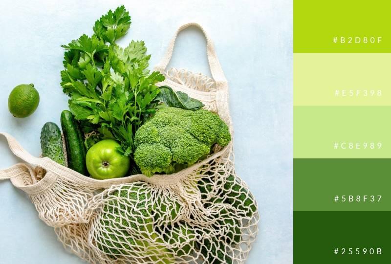 color-palette-fresh-greens