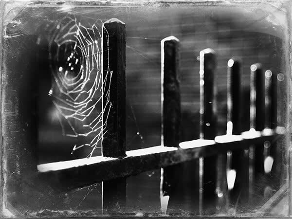 spooky image with Daguerreotype frame