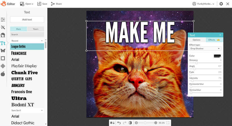 Add your punchy text to your meme in PicMonkey with the text tool and effects.