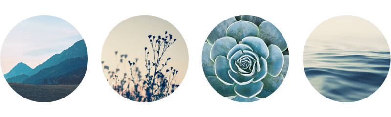 Easily make a line of circular images with PicMonkey.