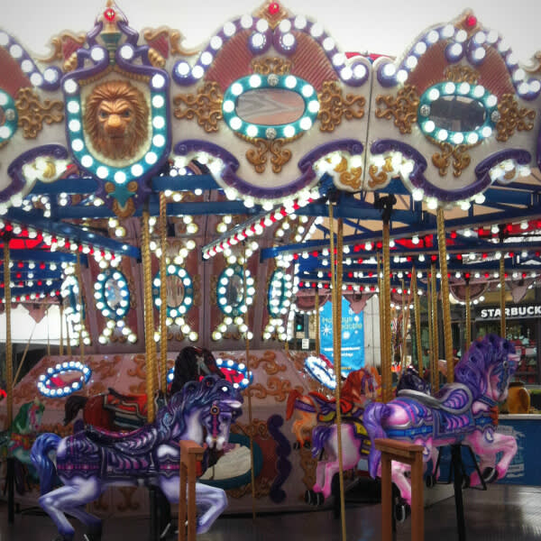 Staff photo walk: winter carousel adorned with thousands of lights.