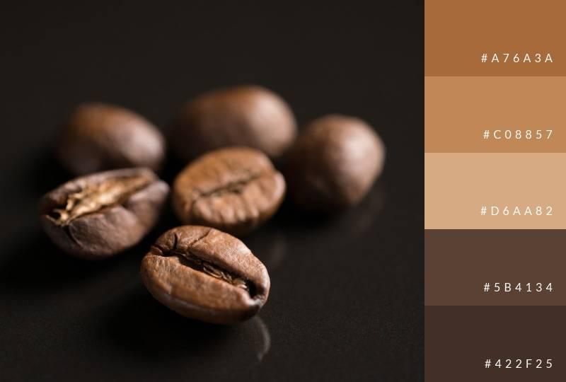 color-palette-coffee-beans