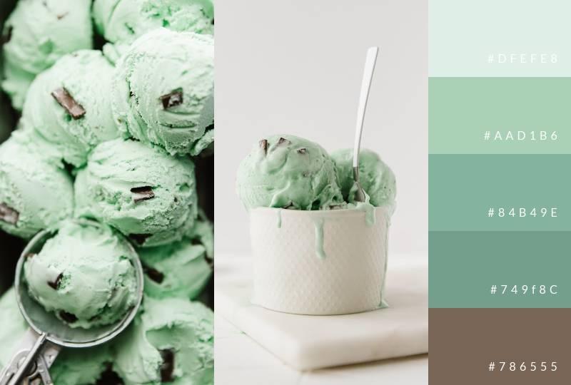 color-palette-mint-chocolate-chip