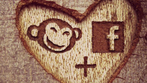 PicMonkey and Facebook logos in a heart carved onto a tree trunk.