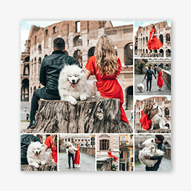 Créateur de collage photo : modèle de collage chiot