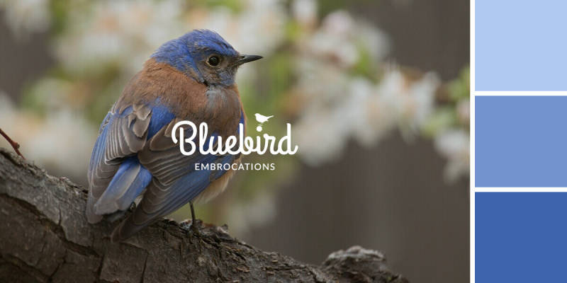 Learn how to choose a color palette that aligns with your brand, like the blues in this advertisement for a fictional company called Bluebird Embrocations.