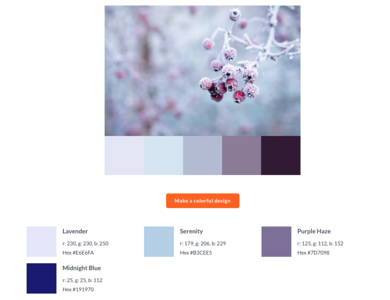 generate a color palette from a photo at picmonkey