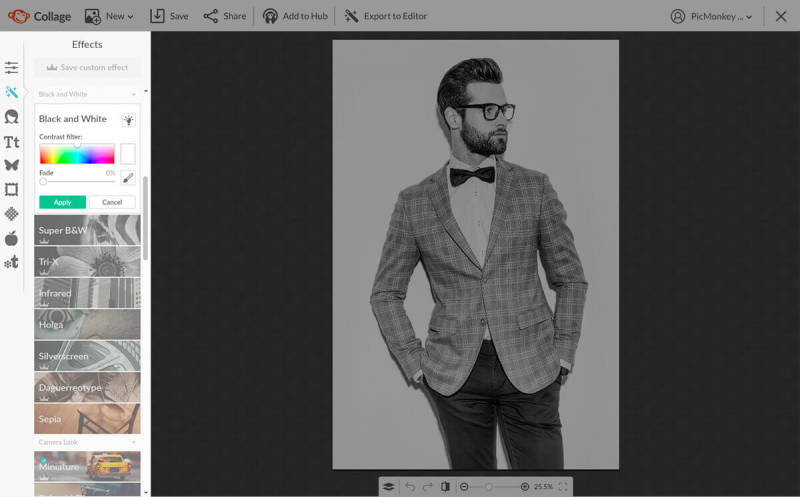 Photo of a smartly dressed man turned black and white with PicMonkey's tools.