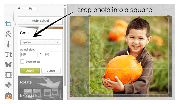 Crop controls for making DIY place cards from a photo of a boy holding a pumpkin.