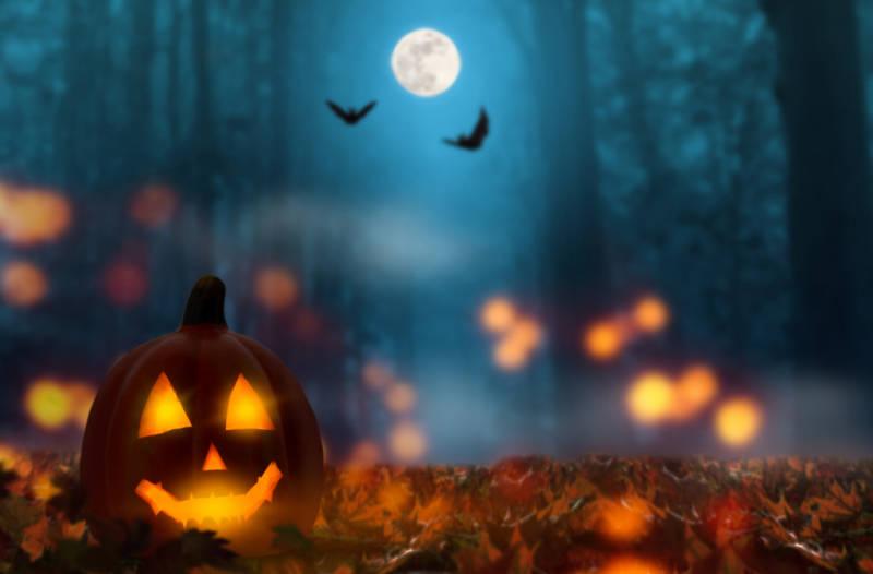 halloween night pic