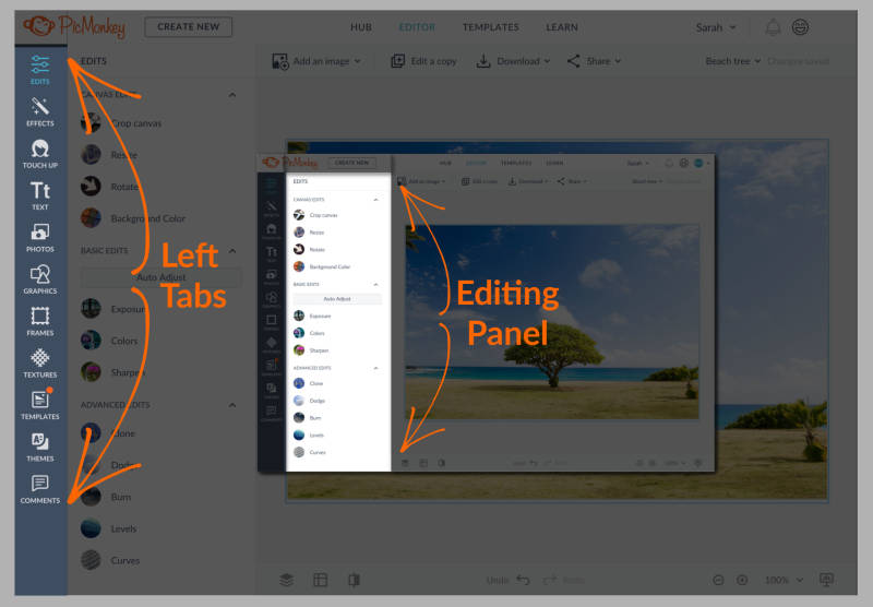 PicMonkey Editor Overview
