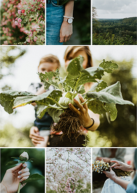 gardening-collage-photo-card-template